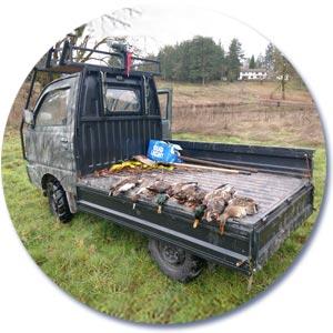 Mini Truck - Duck Hunting